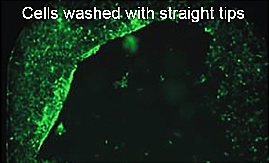Cells washed with straight tips
