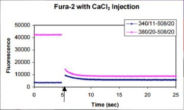 Effect of calcium Injection into Fura-2