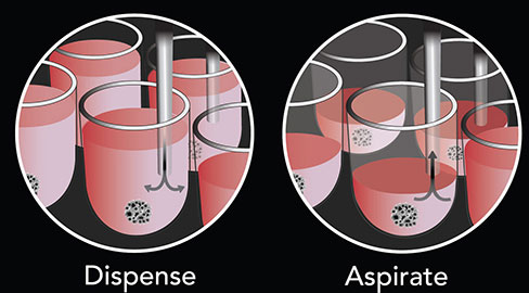 Parallel dispense