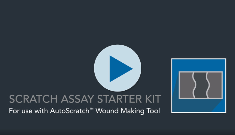 Scratch Assay Starter Kit for Wound Healing and Cell Migration Assays